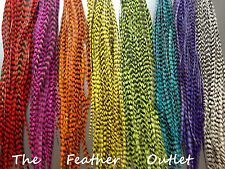 Lot 25 Feather Hair Extensions Bulk Wholesale Natural Real Colors ALL GRIZZLY
