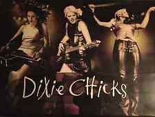 Dixie Chicks Giant Collectible Fly (Concert) Vinyl Hanging Poster/Sign from 2000