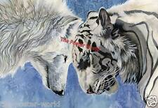 Beautiful White Tiger And Wolf Image  Picture Poster Wall Art Print New