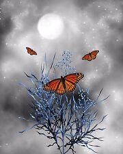 Blue Gray Orange Home Decor Butterflies Wall Art Photo Print Butterfly Pic w Mat