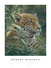 LEOPARD ART PRINT Symbol of the Rainforest detail by Robert Bateman 32x24 Poster