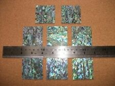Two Inch Square Paua Shell Flat  Blank 4 Inlay 50x50mm