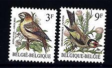 BELGIUM - BELGIO - 1985 - Uccelli