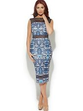 BNWT Amy Childs Barclay Mesh Insert Midi Pencil Occasion Evening Dress 16