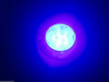 MARINE RV BOAT TRAILER 6 LED BLUE CEILING COURTESY LIGHT S.S. RIM FLUSH/SURFACE