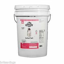 Augason Farms Iodized Salt Pail - 46 lbs. Emergency Food Storage