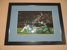 Signed 12x8 photo Framed Torres Chelsea  COA