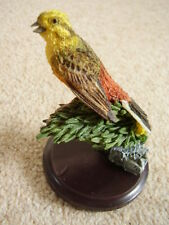 French The country bird collection,bird figure-ornament,The Greenfinch