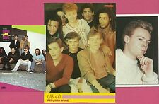 UB40 Ali Campbell Norman Hassan FAB Card Collection British reggae pop band D