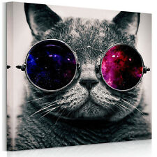 US STOCK Canvas Print Wood FRAMED Home Decor Wall Art Picture Cool Glasses Cat