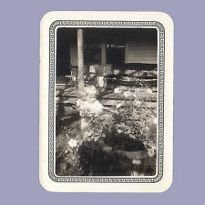 Vintage Photo 1930s TODDLER and PETUNIAS Flowers 1937