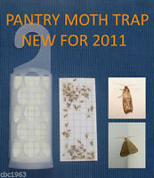 KRITTERKILL-LARDER-PANTRY-INDIAN-MOTH-PHEROMONE-TRAP-OVER-250-000-PADS-SOLD
