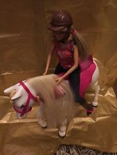Barbie Walking Together Horse And Doll Horse Walks