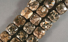 "SUPER WYOMING TURRITELLA FOSSIL AGATE 14MM SQUARE BEADS 16"" STR"