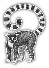 Lemur Sketch Car Bumper Sticker Decal 4'' x 5''