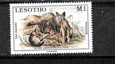 LESOTHO SC #463 MINT-MNH MALOTI YOUNG ANIMALS JACKAL  COMMEMORATIVE STAMP