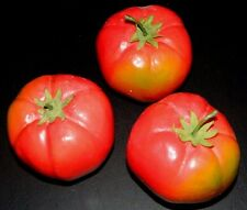 Tomatoes Vegetable Fake Food Home Decor Prop Realistic Artificial 3 Pc