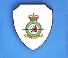 ROYAL AIR FORCE TACTICAL IMAGERY INTELLIGENCE WING WALL SHIELD (FULL COLOUR)