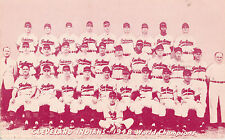 1948 Cleveland Indians Baseball Team Photo, World Champions