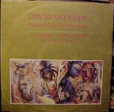 David Sylvian Words With The Shaman Uk 12""