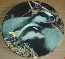 Royal Doulton A GAME FOR TWO From OUR LITTLE WOODLAND FRIENDS Collectors Plate