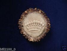 chasse . ancien médaillon ou objet ornemental en bois de cerf . couronne Comtale