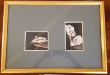 William Wolk GICLEE ? Signed Framed Swan Song On Lily Pad