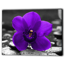 Purple Orchid Canvas Framed Flower Rose - Wall Art Print Gifts - Ready To Hang