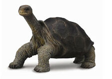 PINTA ISLAND TORTOISE Replica # 88619~ FREE SHIP /USA $25+Collecta Product