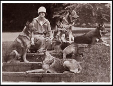 GERMAN SHEPHERD LADY AND HER SIX DOGS LOVELY PERIOD IMAGE ON DOG PRINT POSTER