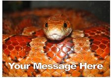Personalised A4 Corn snake cake topper edible icing sheet