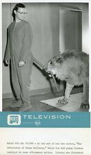 WALLY COX IN CAT COSTUME WITH LION ADVENTURES OF HIRAM HOLLIDAY '56 NBC TV PHOTO