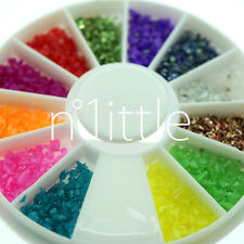 12 Colors Crushed Shell Powder Acrylic Nail Art + Wheel #N514C