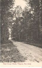 Early 1900's The Road Through Woods in Pittsgrove, NJ New Jersey PC