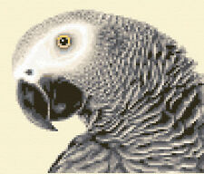 AFRICAN GREY PARROT - bird  - Complete counted cross stitch kit