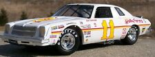 #11 Cale Yarborough 1976 Holly Farms Chevy 1/25th - 1/24th Scale DECALS