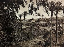 1925 GAZA STRIP Palestine Photogravure Photograph Architecture Landscape Palms
