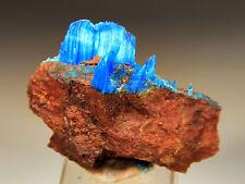 """2.6"""" Natural Blue Chalcanthite on Matrix, Planet Mine, Arizona! CHA348"""