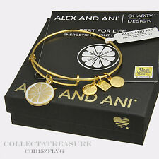 Authentic Alex and Ani Zest for Life (ii) CBD Yellow Gold Bangle
