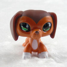 Littlest Pet Shop #675 Savannah Savvy Dachshund Dog.