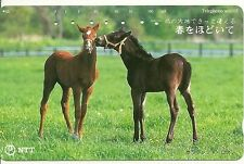 RARE / CARTE TELEPHONIQUE JAPON - CHEVAL CHEVAUX POULAIN HORSE / PHONECARD JAPAN