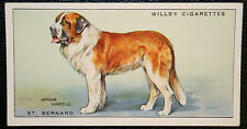 Saint Bernard  Dog   Original Vintage  Coloured Card  VGC