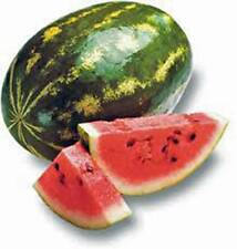 WATERMELON SEED, FLORIDA GIANT, HEIRLOOM, ORGANIC 100 SEEDS, NON GMO, MELON