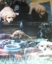 Dog flag with Labradors Black Brown Yellow puppies