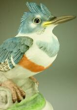 BOEHM Porcelain Statue Fledgling Kingfisher Made in USA