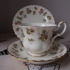 Vintage Royal Albert English Bone China Trio Cup Saucer & Plate 'Winsome'