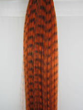 GRIZZLY FEATHER HAIR EXTENSION 16 INCHES  i TIP  MANY COLORS!