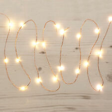 20 Christmas Party Warm White Indoor LED Lights Copper Garland Decoration