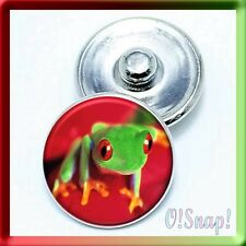 RED EYE FROG Ginger Snap Button Charm (Cart ANY 4 store items, 2 will be FREE)