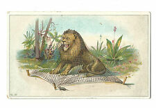 Old Trade Card JP Julius Music York PA Leckerling Piano Lion Net Mouse